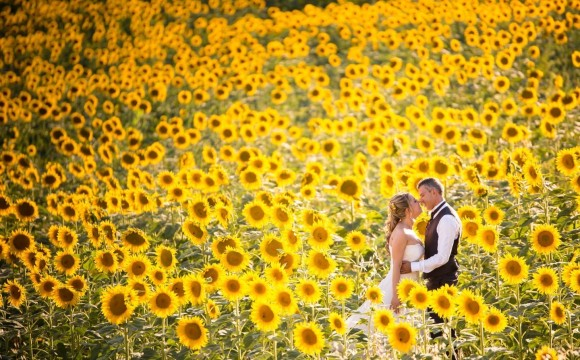 Silvia e Marco • Wedding Story